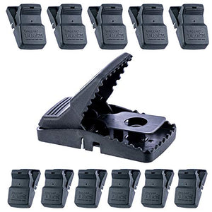 Trapper T Rex Rat Snap Traps (1 Case-12 traps)