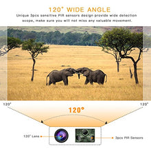 Load image into Gallery viewer, TOGUARD Rodent / Wildlife Camera, 14MP 1080P, Night Vision, Motion Activated, Waterproof, 120° Detection