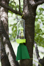 Load image into Gallery viewer, RESCUE! Non-Toxic Reusable Stink Bug Trap