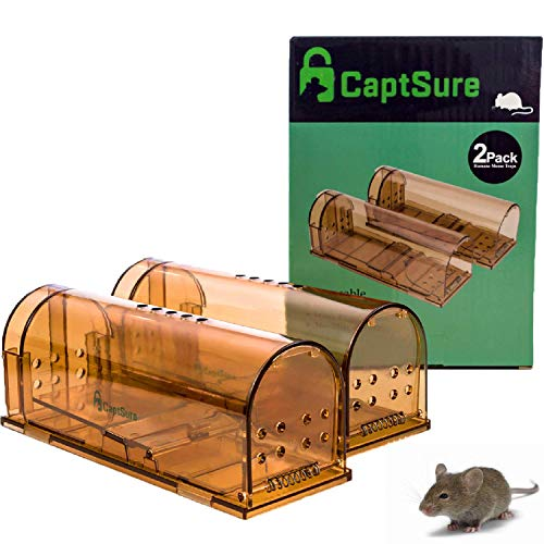 CaptSure 2019 Humane Smart Indoor/Outdoor Mouse Trap for Small Rodents/Voles/Moles, Live No Kill Catcher (2 Pack)