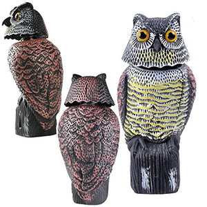 Owl Decoy with Rotating Head Bird Deterrent