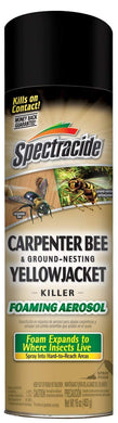 Spectracide Carpenter Bee & Ground-Nesting Yellowjacket Killer Foaming Aerosol (Pack Of 2)
