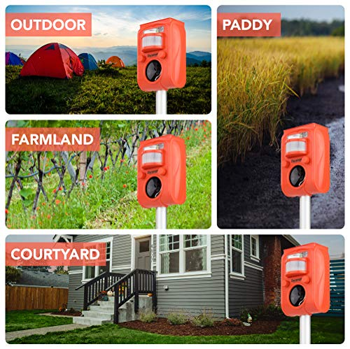 DURANOM Ultrasonic Solar Powered Animal Repeller w/ Motion Sensor, Strobe  Light & Alarm Chase