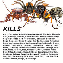 Load image into Gallery viewer, Demise Fire Ant and Insect Killer Powder (1 Pint)