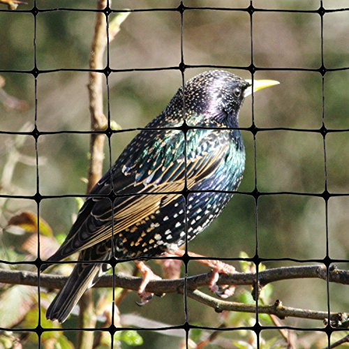 Bird-X Bird Netting for Gardens and Lightweight Applications (100 ft. x 14 ft)