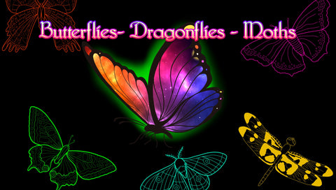 30 Butterfly, Dragonfly, Moth procreate brushes