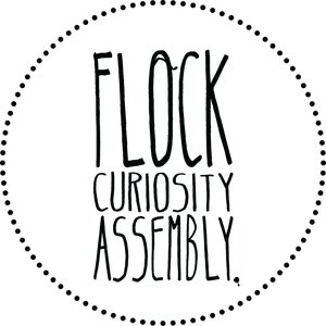 Flock Curiosity Assembly