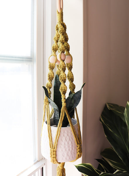 3 Plant Hanger Hacks: What to do  When You Can't Drill into Your Ceiling