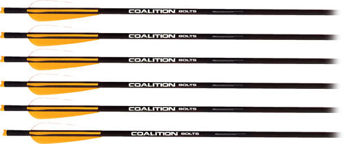 "Pse Xbow Arrow Coalition 20"" - Carbon 6pack"