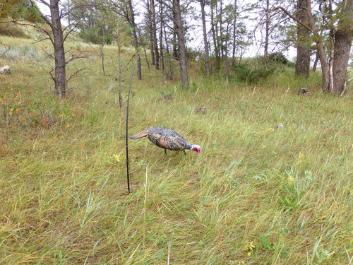 Montana Decoy Turkey Jake - Purr-fect