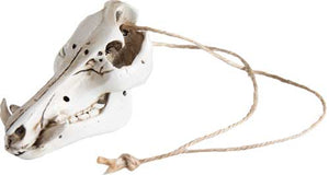 Mountain Mike's Mini Wild Boar - Skull Mirror-ornament Hanger