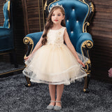 Flower Girl Dresses Kids Sleeveless Princess Wedding Bridesmaid Formal Graduation Party Prom