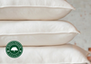 WHOLE Organic Goose Down Pillow