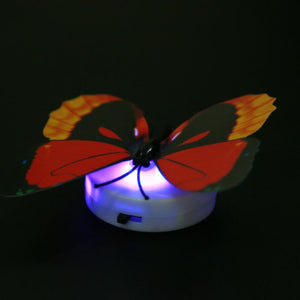 Beautiful Butterfly LED Night Light Lamp