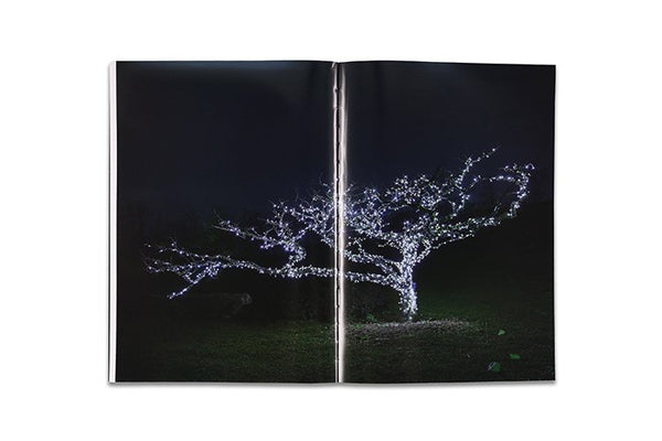 Feng Li╱White Night╱2nd Edition╱Signed
