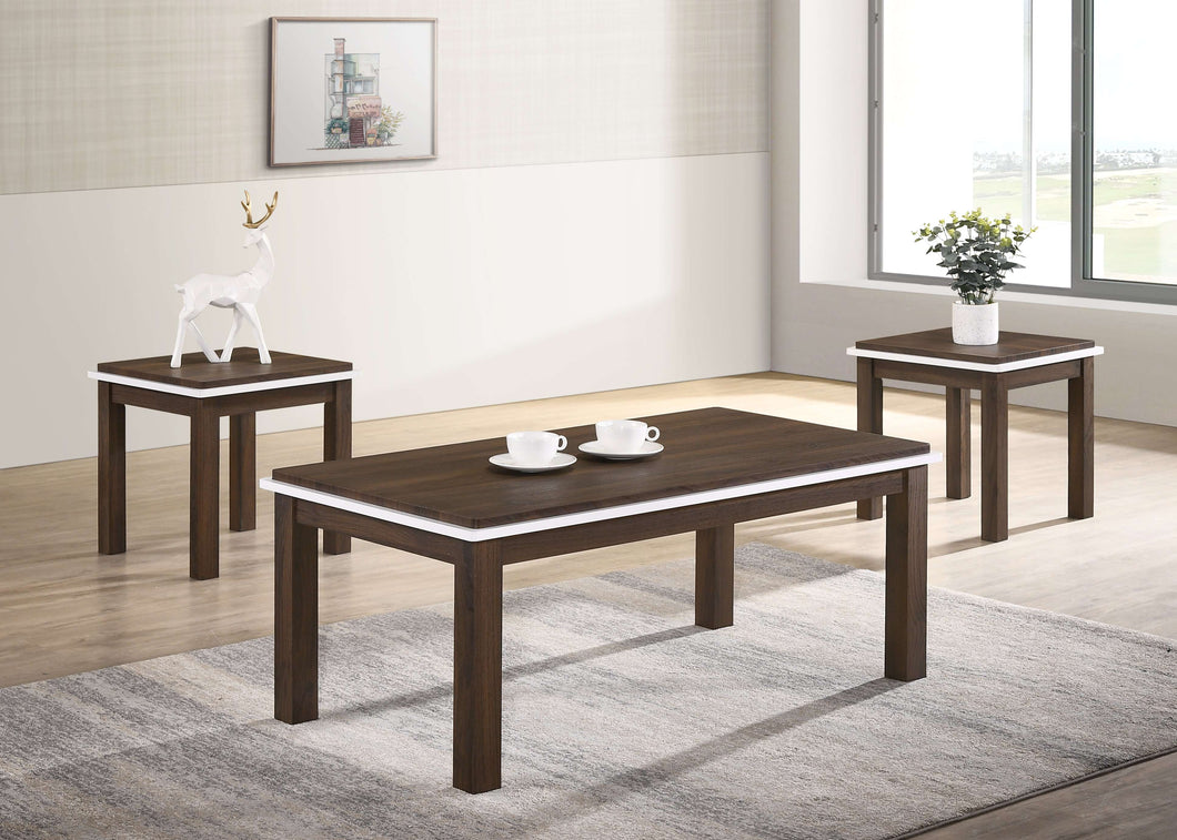 Shawn Coffee Table Set - Richicollection Furniture Warehouse