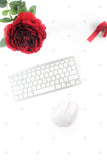 Red Rose Blogger