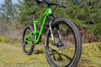 BIKE CHECK: ANTHEM ADVANCED PRO 29 DE LEO PAEZ
