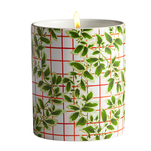 The Ivy Candle