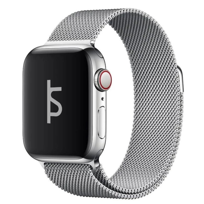 Milanese Loop (Clearance Sale)