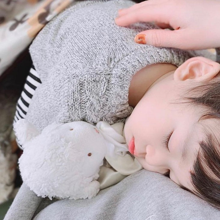 Child sleeping with a lovey lamb from Bunnies By The Bay.