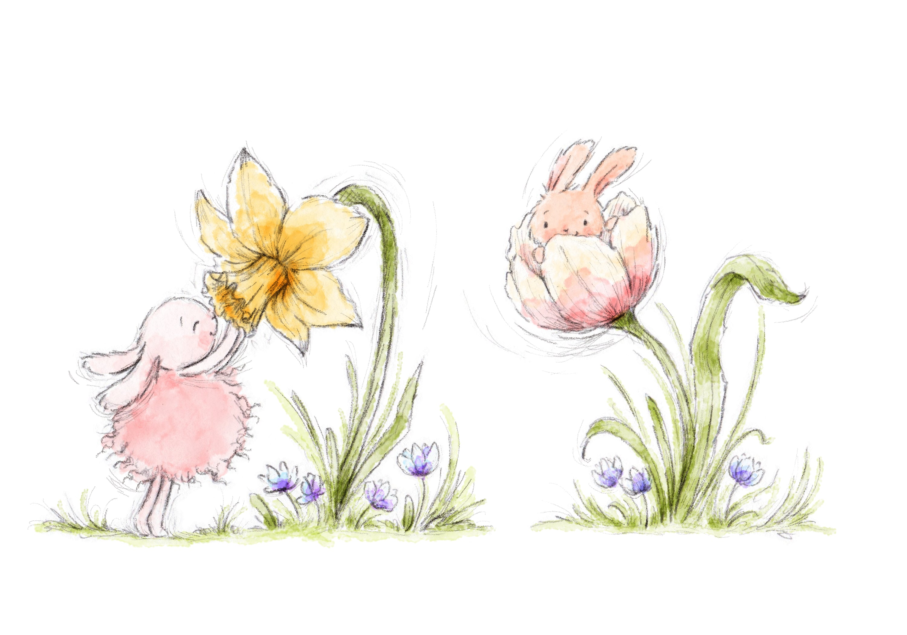 Roly Poly Bunnies and Flowers Art