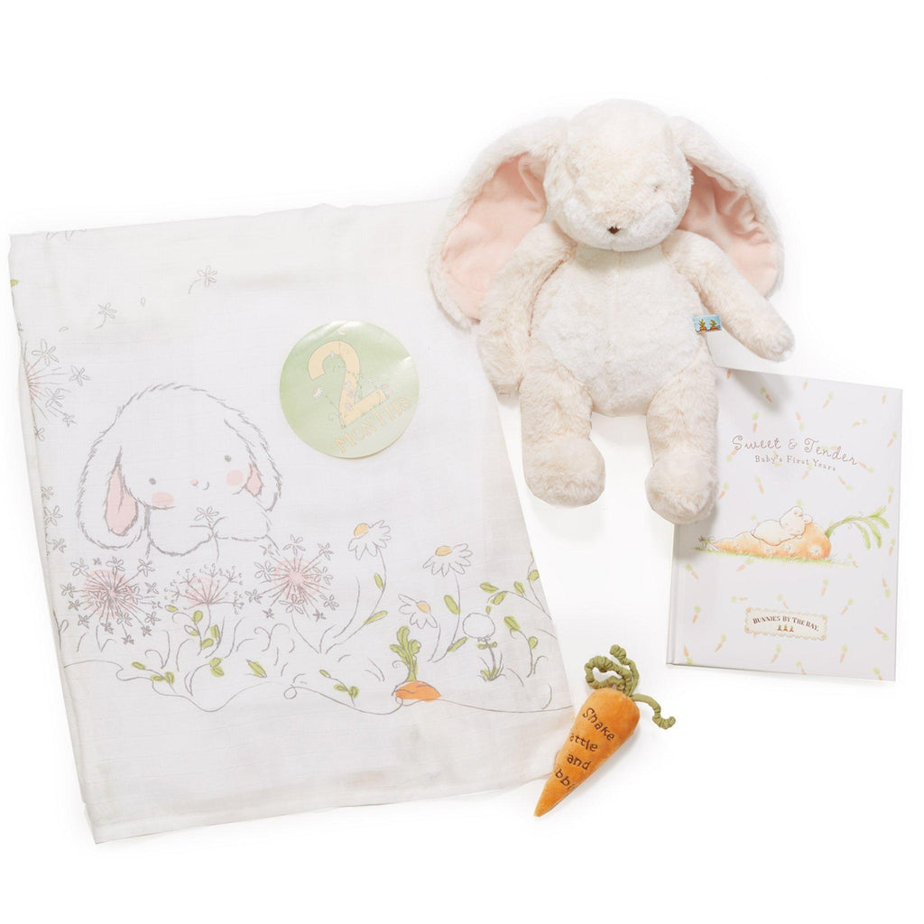 [product-color] Sweet Milestones and Memories Gift Set a gift set from Bunnies By The Bay: -843584016681-100854