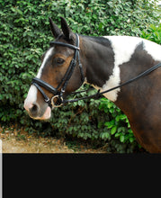 Load image into Gallery viewer, Windsor crank flash bridle & rubber reins - Pony - Cob - Full - Extra Full