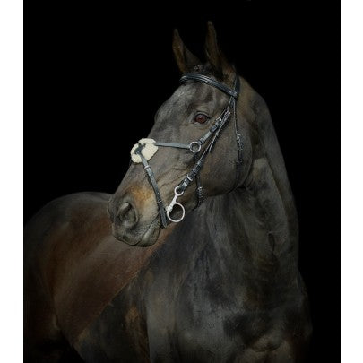 Gallop Grackle Bridle & Reins - Pony Cob Full Extra Full