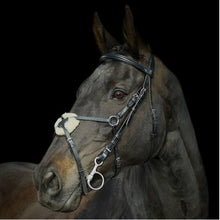 Load image into Gallery viewer, Gallop Grackle Bridle & Reins - Pony Cob Full Extra Full