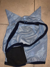 Load image into Gallery viewer, Baby Blue Fly Mask - Pony Size - Free Delivery 🚚