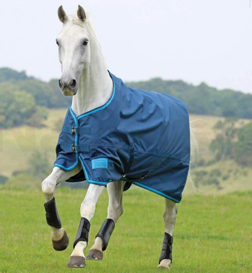 Shires Tempest No Fill Turnout Rug - 7'3 or 4'6