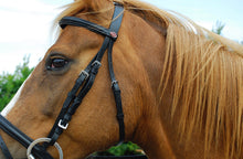Load image into Gallery viewer, Windsor Black Flash Bridle & Rubber Reins - Full Size