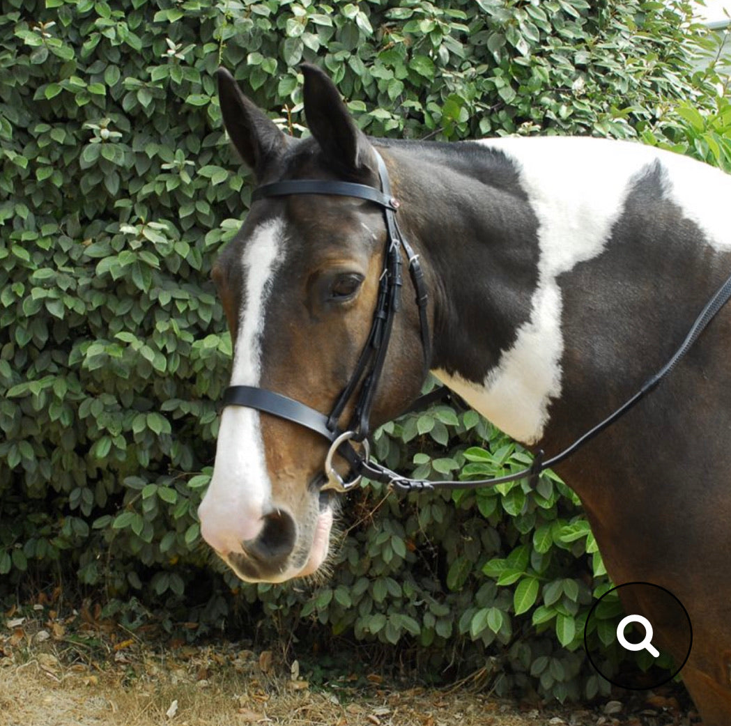 Windsor Hunter Bridle & Rubber Reins - Pony