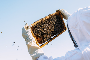 How much time does beekeeping require