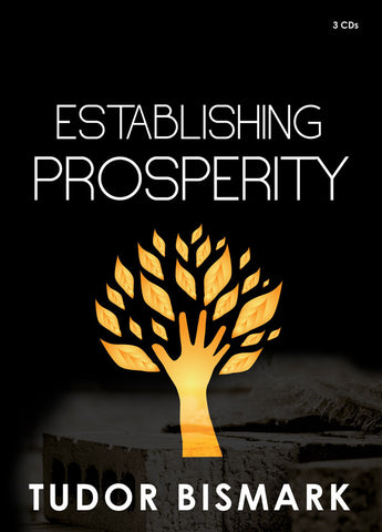 Establishing Prosperity - 3 CD Series