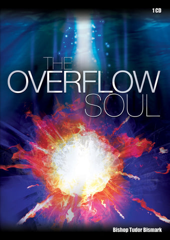 The Overflow Soul - MP3