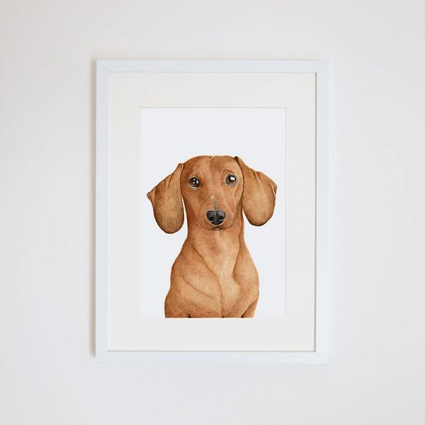 Print – Duke the Daschund