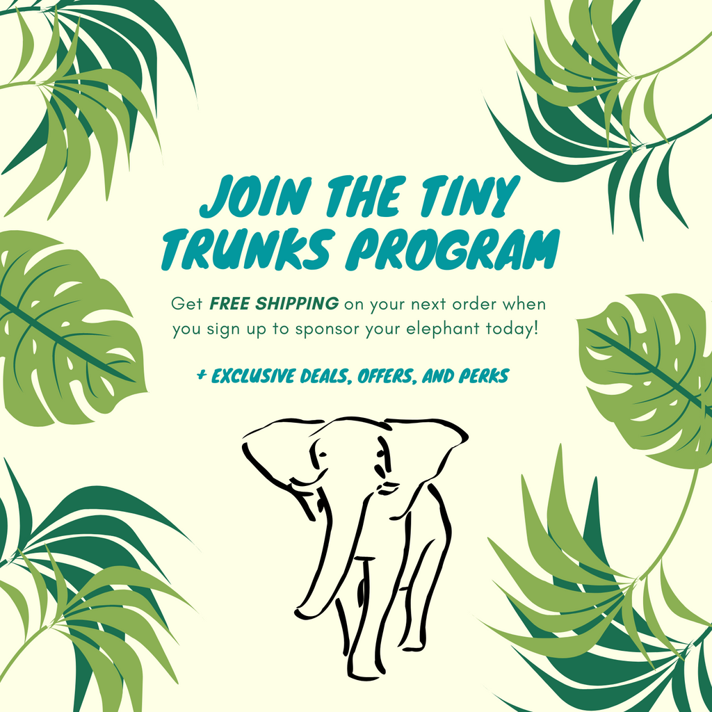 Join the tiny trunks and get free shipping