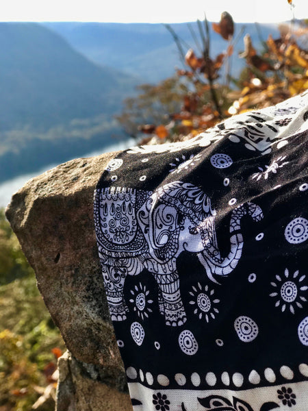 Close up of elephant pants on rock with scenic backdrop.