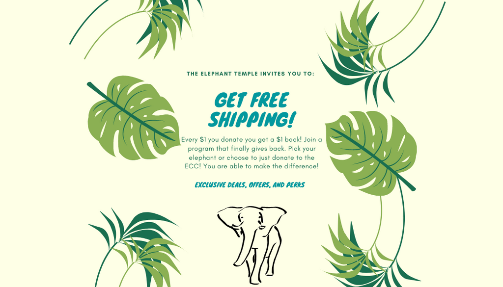 Join Tiny Trunks and get free shipping on your next order