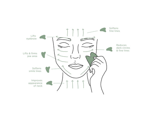 how to gua sha infographic