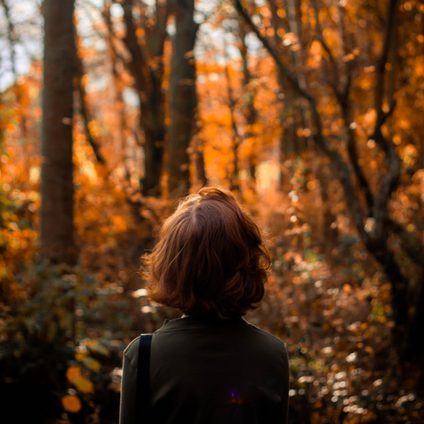 woman walking in autumn leaves and trees