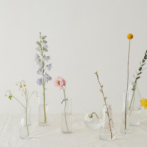 wild flowers in glass bottles on cream background