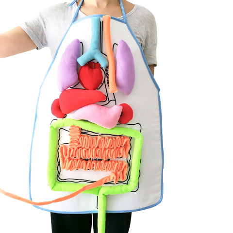 Image of 3D Body Organ Plush Toy with Apron Viscera - That Good Deal