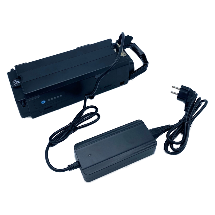 Giant Twist & Ease 36 Volt bicycle battery, with new charger