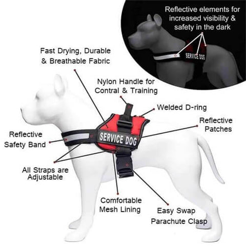 All In One No Pull Pet Vest Harness