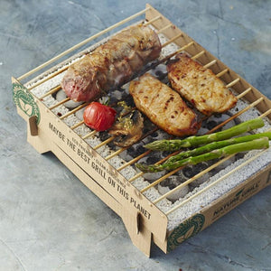Biodegradable, Portable and Disposable Mini Grill