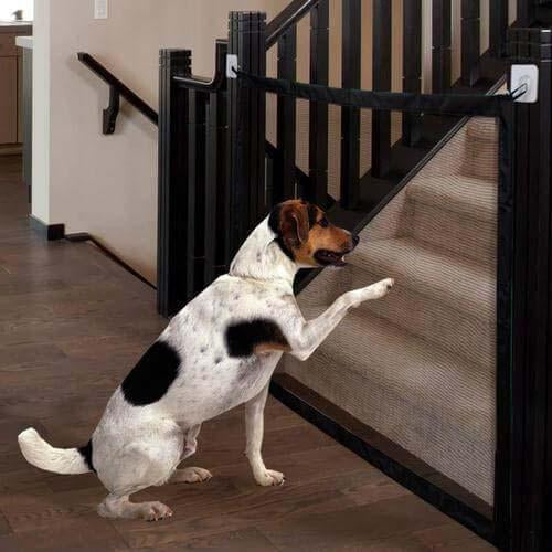 Portable Dog Safety Door Guard