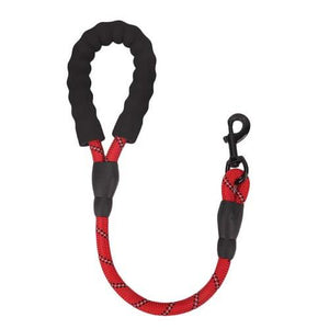 Reflective Nylon Dog Leash